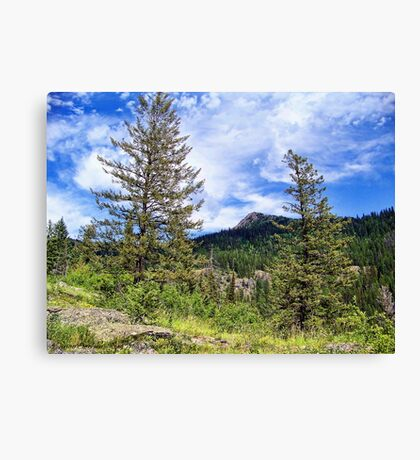 Hall Peak (Bob Marshall Wilderness, Montana, USA) Canvas Print