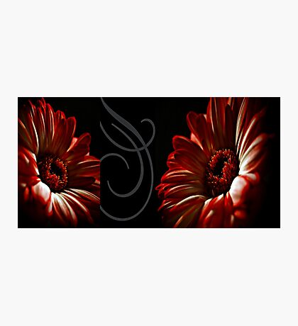 Floral Red Heads Photographic Print