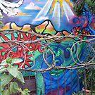 Wonder Wall by Hank Eder