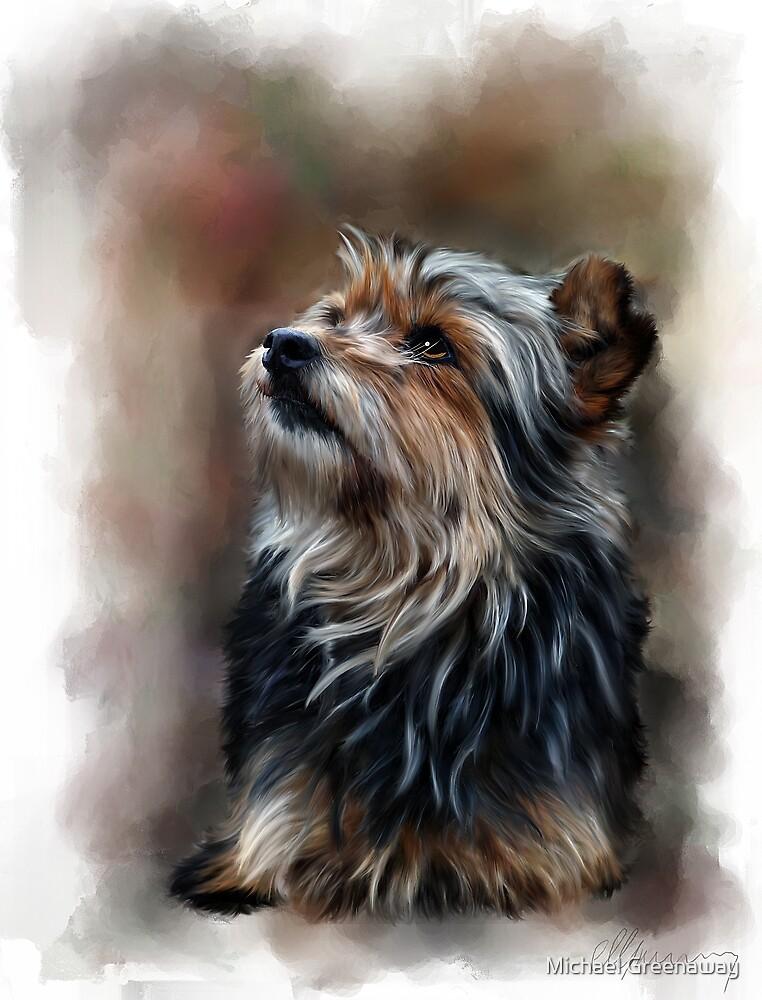 Shaggy pet dog portrait by Michael Greenaway