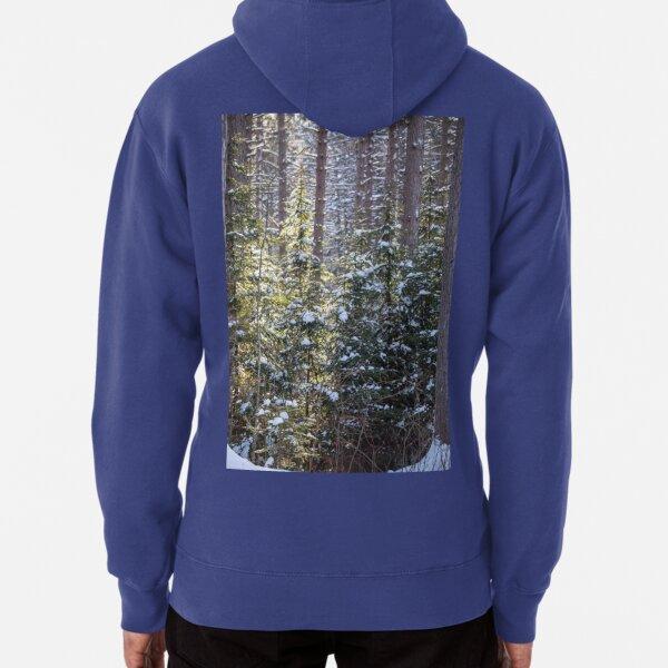 Snowy Sunlit Trees Pullover Hoodie