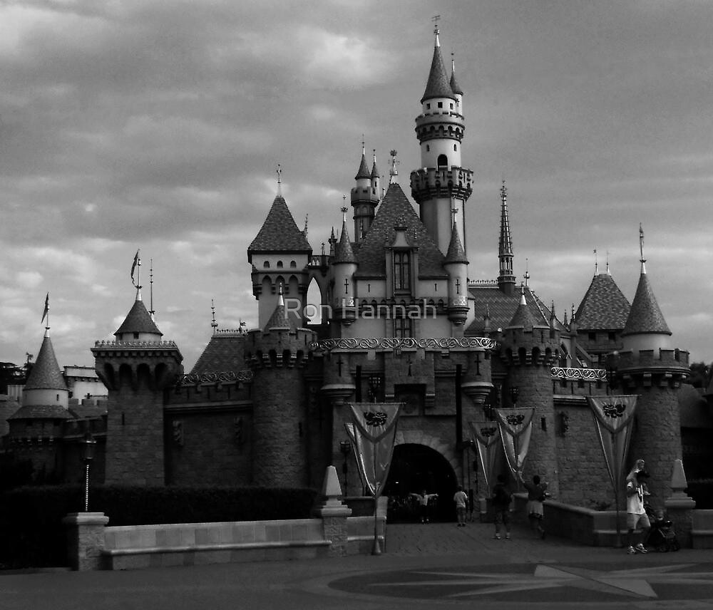 Castle In Black & White by Ronald Hannah