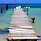 The beauty of Caukler Caye by Angie  Hoover