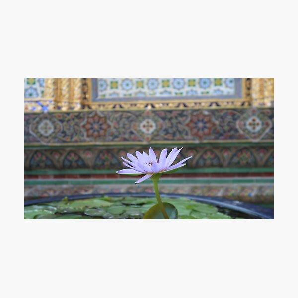 Bangkok Temple Flower Photographic Print