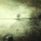 Shroud of fear by Angela King-Jones