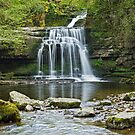 West Burton Falls by spemj