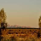 The Olgas by Karina  Cooper