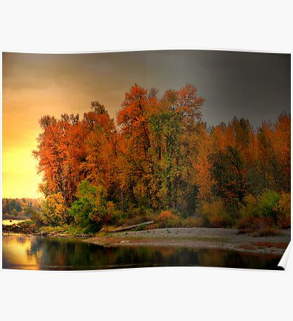 Fall On The Willamette River Poster