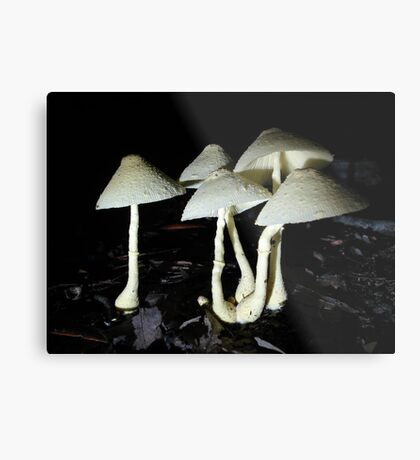 BUTTER YELLOW Metal Print