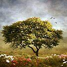 Eternal Spring by Jessica Jenney