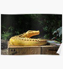 Croc Poster