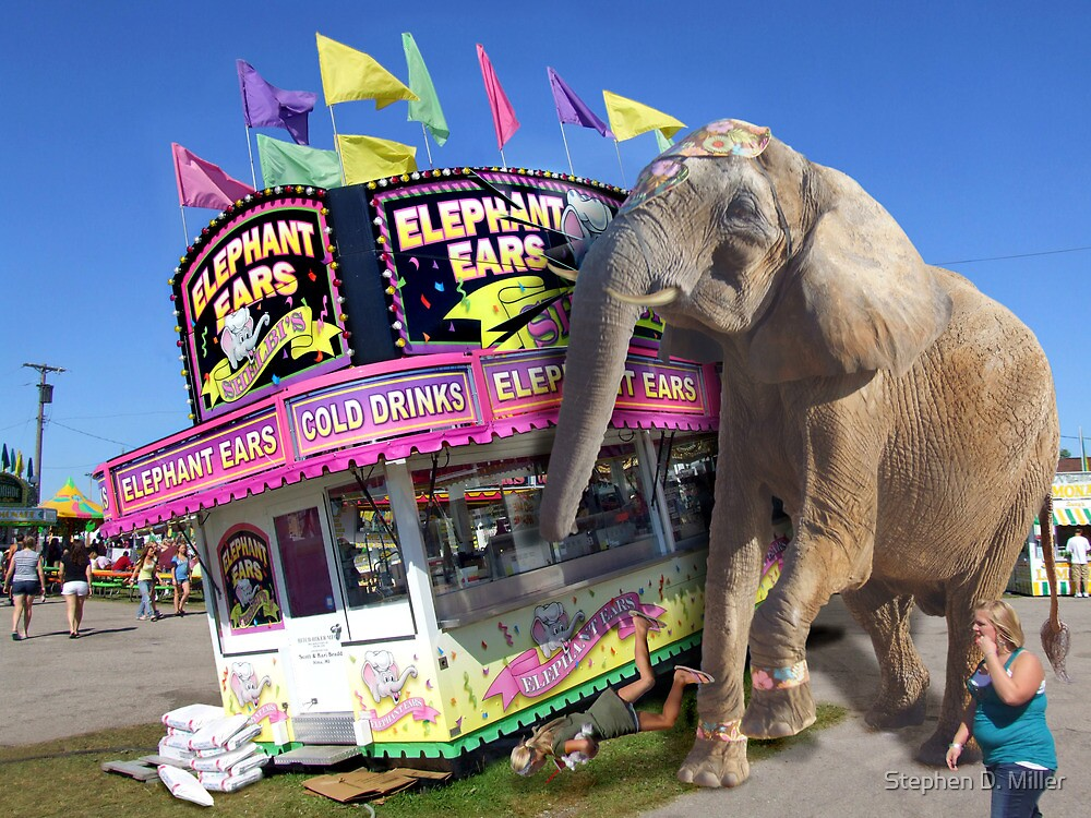 Get Your Elephant Ears! by Stephen D. Miller