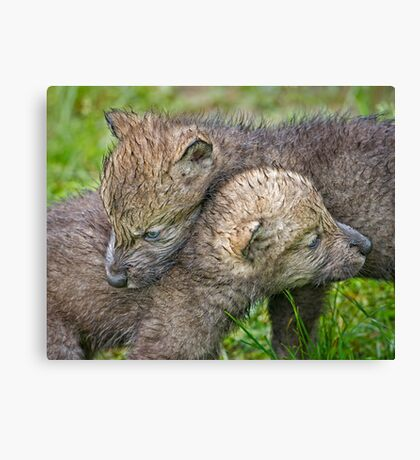 For Life Canvas Print