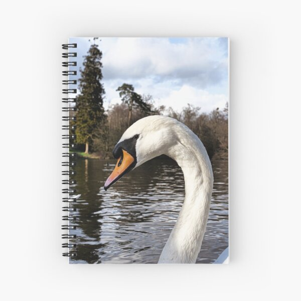 Swan Looking Straight Into My Eyes Spiral Notebook