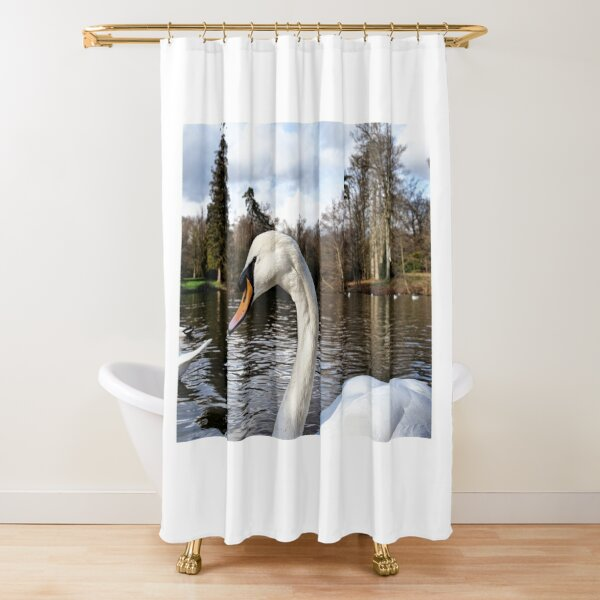 Swan Looking Straight Into My Eyes Shower Curtain