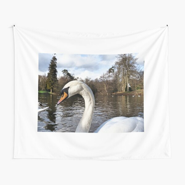 Swan Looking Straight Into My Eyes Tapestry