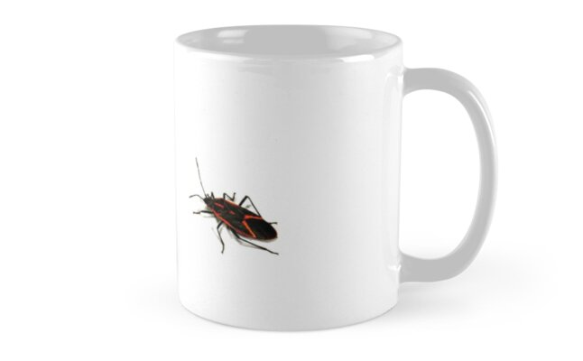 Bug Mug Gag by adamcampen