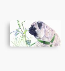 Pug & Nature - Colored Pencil Metal Print