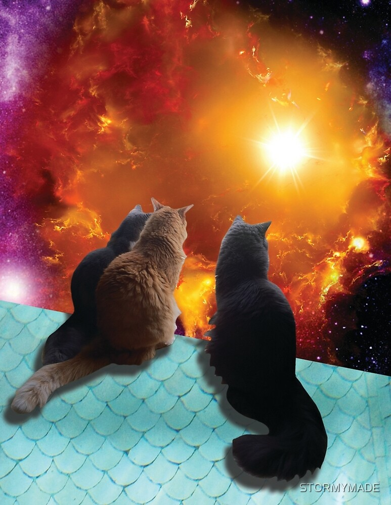 space cats by STORMYMADE
