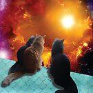 «gatos espaciales» de STORMYMADE