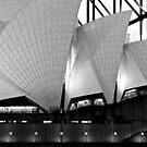 Quintessential Sydney by Mark  Lucey