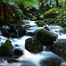 Cement Creek2 by Dave Callaway
