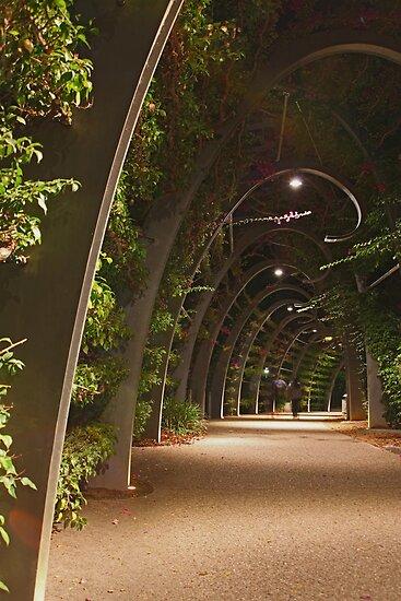 Southbank Parklands, Brisbane, Australia by Sea-Change