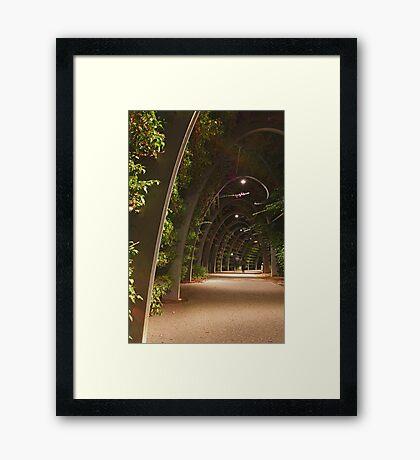 Southbank Parklands, Brisbane, Australia Framed Print