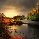 Glow On The Willamitte River by Charles & Patricia   Harkins ~ Picture Oregon