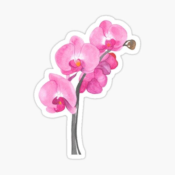 Watercolor orchid Sticker