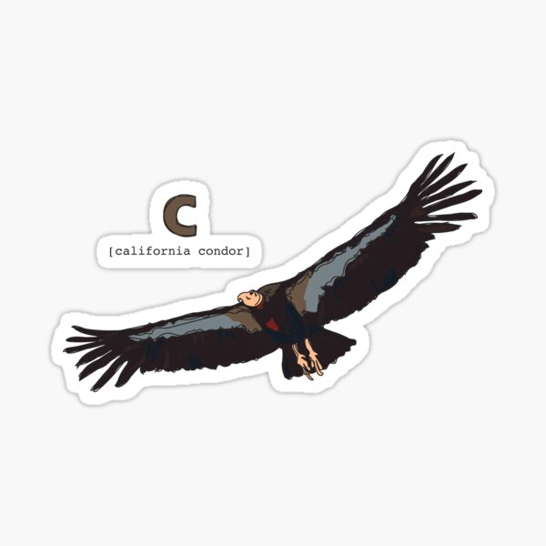 Funky Animal Alphabet: C is for California Condor Sticker