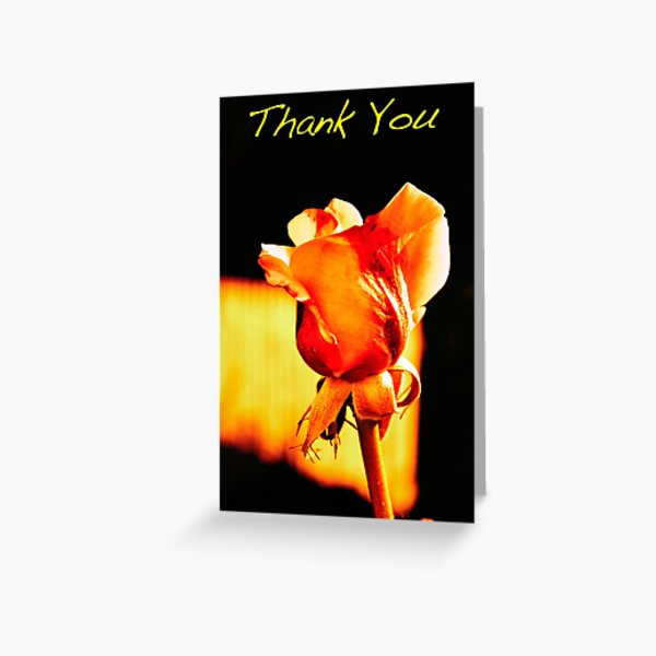 Yellow Rose Thank You Note Greeting Card