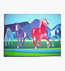 Mustangs of the Western Part of the USA ll Photographic Print