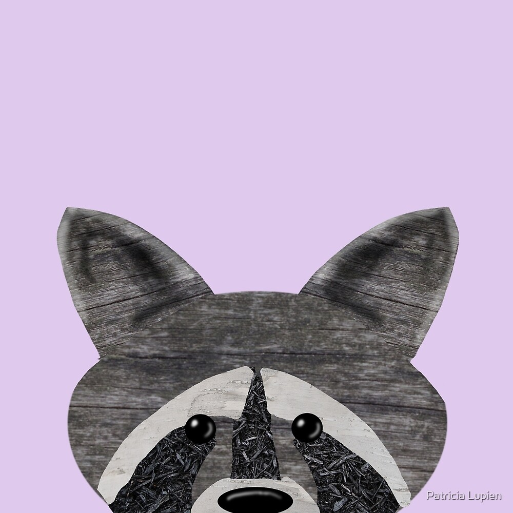Woodsy Raccoon by Patricia Lupien