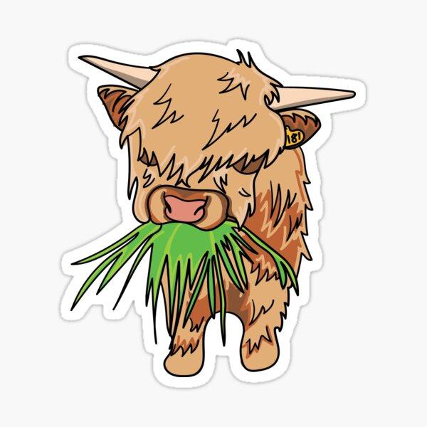 Scottish Cow Sticker