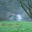 Minne Ha Ha Falls by mspfoto