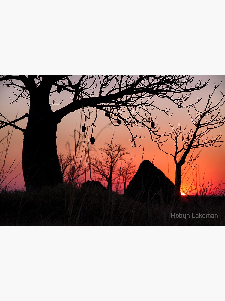 Boab and termite mound sunset by Rivergirl