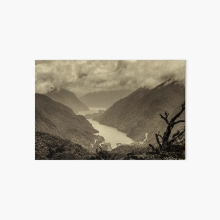 Fiordland (s) Art Board Print
