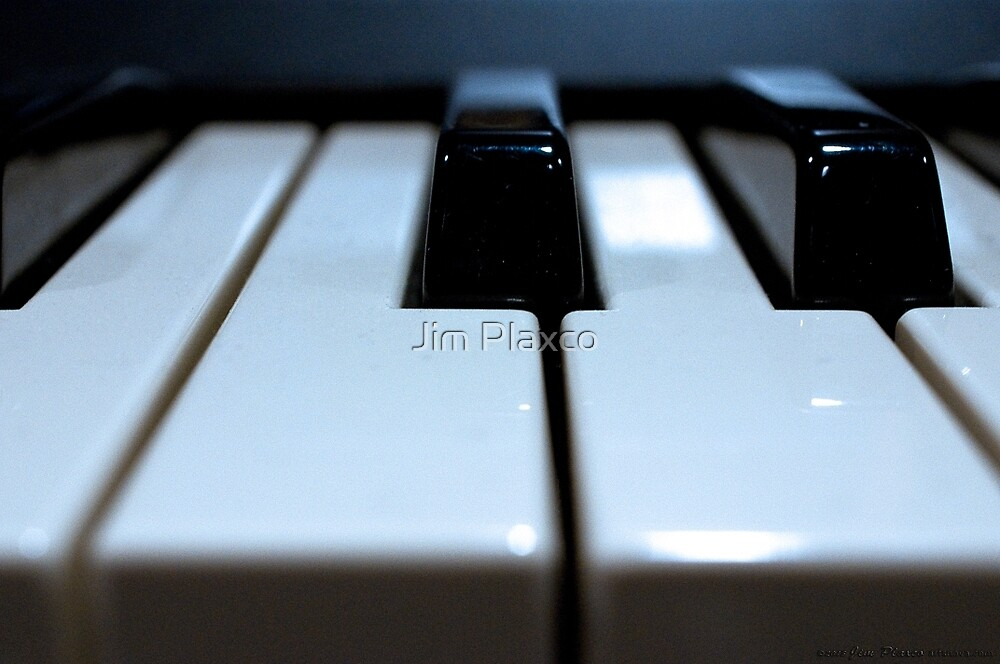 Note That Key - Synthesizer Keyboard by Jim Plaxco