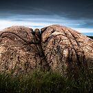 Twin Peaks by Kofoed