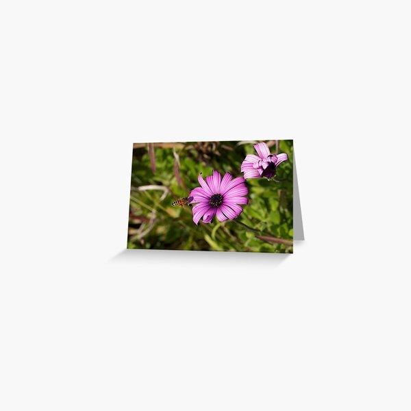 FLOWER BEE Greeting Card