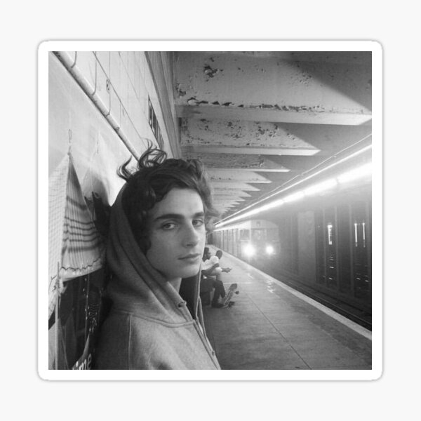 Timothée Chalamet in Train Station  Sticker