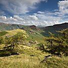Side Pike & Lingmoor Fell by SteveMG