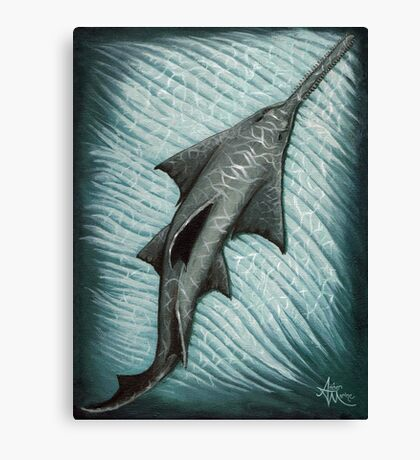 Sawfish Canvas Print