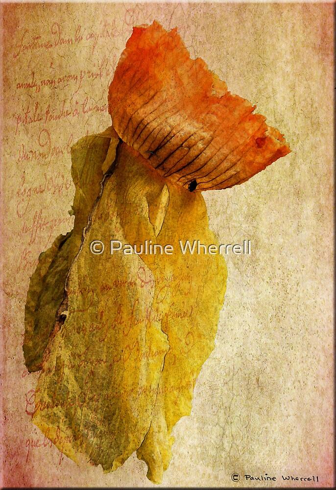 Still beautiful by © Pauline Wherrell