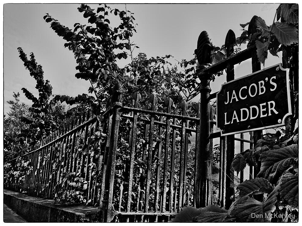 Jacob's Ladder (mono) by Den McKervey