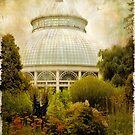 The Conservatory by Jessica Jenney