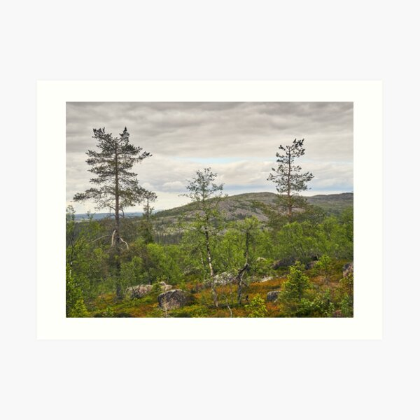 A view to north from Pyha Nattanen Art Print