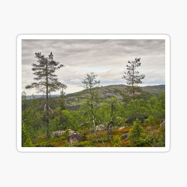 A view to north from Pyha Nattanen Sticker