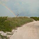 Over the Rainbow by Sally Kady